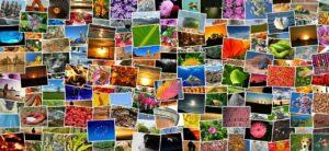 Lizenzfreie Fotos für Websites - Diese Anbieter gibt es
